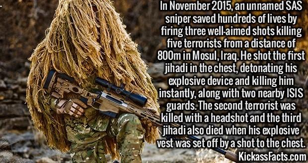 Kickass Fact Comp #36. www.express.co.uk/news/world/626351/H... www.bbc.com/news/av/world-europe-2142... www.britannica.com/biography/Hannah-V... en.wikipedia.o Kickass Fact Comp #36 www express co uk/news/world/626351/H bbc com/news/av/world-europe-2142 britannica com/biography/Hannah-V en wikipedia o