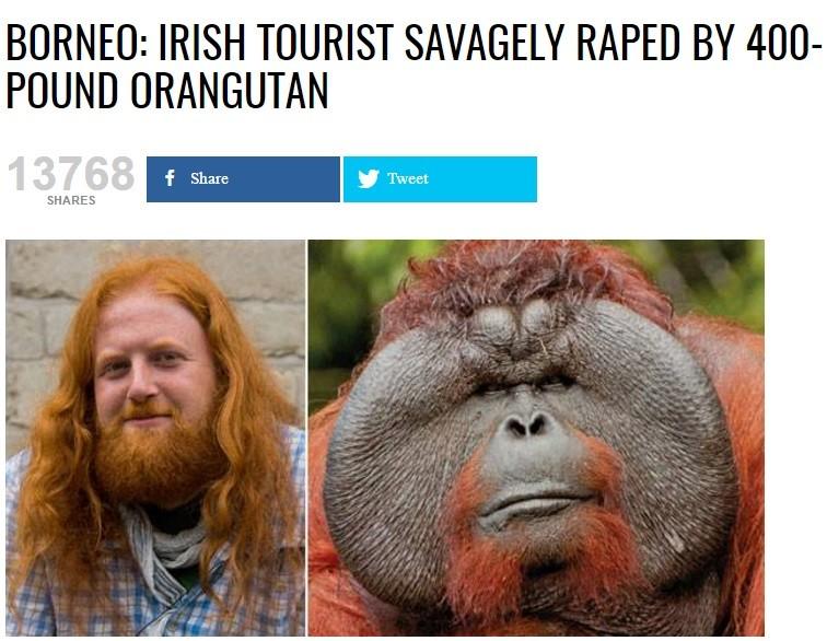 What the actual fuck. urbanleak.com/borneo-irish-tourist-sa... That's what his mother said.. BURNER: IRISH TOURIST ' i RAPE BY 400- POUND ORANGUTAN. get ready for Round 2 irish ginger Rape orangutan