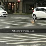 Mudkip's Stolen Memes #18