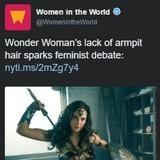 Wonder Woman BIGOT