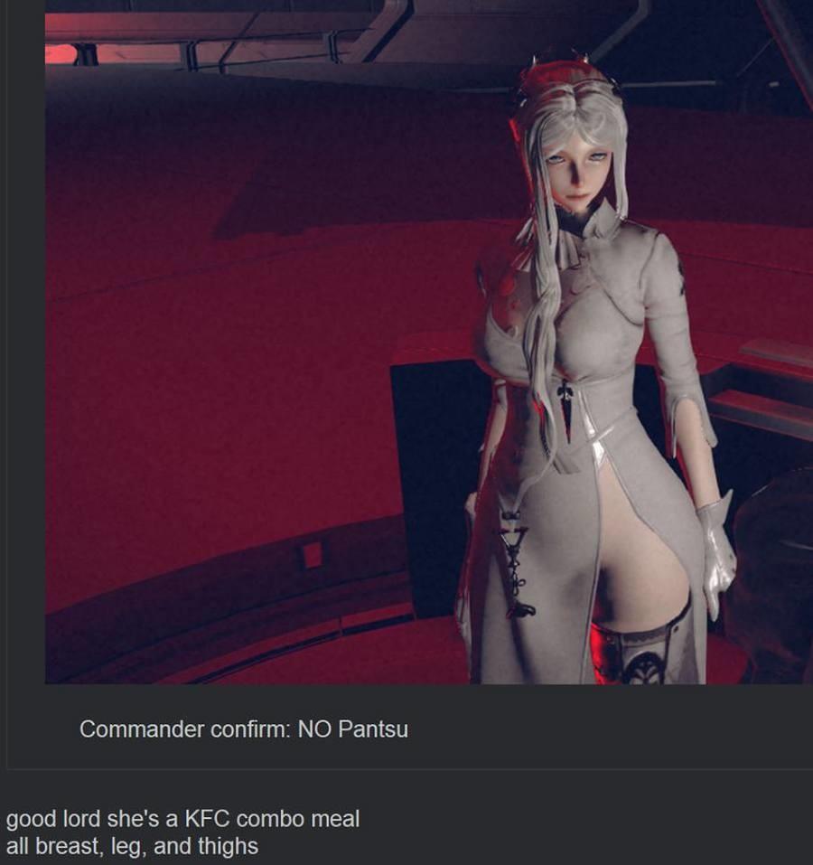 Colonel Commander. . Commander : NO Pantsu good lord she' s a KFC combo meal all breast, leg, an Videogames nier pantsu commander Breasts thighs leg