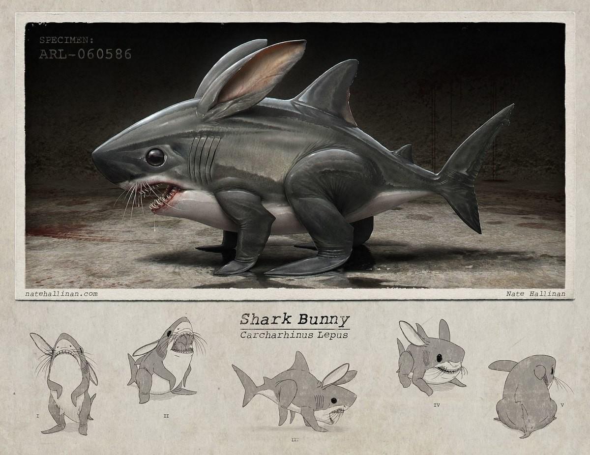 shark bunny. . shark . Lawns. Weirdly interesting join list: SharkosMention History shark bunny Lawns Weirdly interesting join list: SharkosMention History