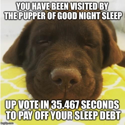 Sleep well. . Sleep well
